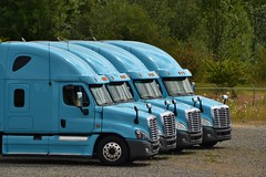 Four Freights (Don's View) Tags: semitruck freightliner maytown freightlinertrucks
