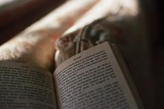 (joelbrendenphotography) Tags: usa 50mm reading nc kodak 14 konica t3 expired portra franny zooey autoreflex 160 salinger hexanon 160nc flickrfriday readbetweenthelines