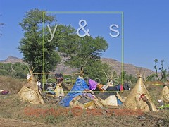 JL050028 (yoyogyogi) Tags: life travel roof india landscape spread indian traditional style dry rope bamboo huts hut strip maharashtra wai cloth shelter cloths shape strips makeshift drying satara vagabonds payacom