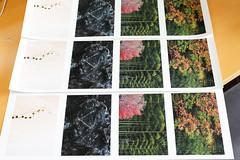 Velvet Fine Art Paper #2