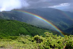 That's what we live (Tsvetan Banev) Tags: mountain mountains rainbow bulgaria balkans balkan  staraplanina