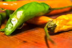 It's getting hot in here (MontyMcKinnen) Tags: eye birds chillies birdseyechillies