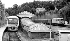 56311 & 165020 (R~P~M) Tags: uk greatbritain england train bars diesel unitedkingdom buckinghamshire railway turbo locomotive bucks 56 highwycombe dcr 165 chilternrailways multipleunit dbarriva