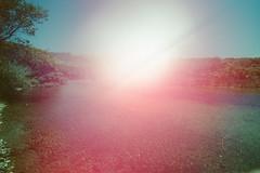 (Blob Oliver) Tags: california light film 35mm paint experimental lightpaint