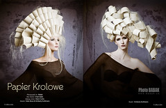 Avant Garde  NAHA (BABAK photography) Tags: hair utah top winner babak naha stylist hairphotography paperhair babakca nahaawards contessaawards avantgardehair nahawinners chadseal bestnahaphotographer utahavantgarde