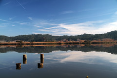 (Antnio Sardinha) Tags: portugal gua reflexos aveiro vegetao montes nvens oliveiradobairro pateiradefermentelos