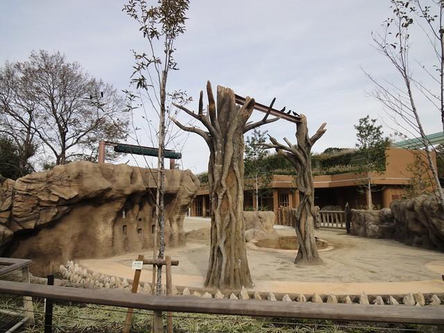 暑い夏にはこの木の上のロールのようなものから網を出し、木陰。|名古屋市東山動植物園