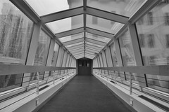 Skywalk Symmetry (Drew Z) Tags: door blackandwhite bw wisconsin sony perspective symmetry madison wi skywalk a290 201311