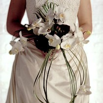 "Brides Bouquet <a style=""margin-left:10px; font-size:0.8em;"" href=""http://www.flickr.com/photos/111130169@N03/11308670986/"" target=""_blank"">@flickr</a>"