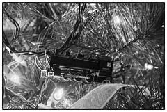 Christmas feelings (Tony Roman Photography) Tags: train lights christmas maryland tonyromanphotography bw ornaments tree night holiday blackandwhite copyrightedbyanthonyproman nikon dslr d80 tonyroman copyrighted anthonyproman photography