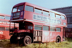 RM840 WLT840 Aldenham openday accident victim (sms88aec) Tags: 1983 aldenham openday