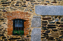 Ventana Emparedada   ///   Walled in Window (Walimai.photo) Tags: plant green planta texture textura window stone wall de ventana pared reja los san explore gallegos piedra felices