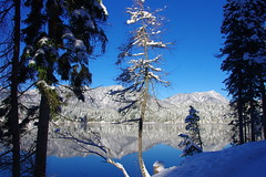 Ahh... the flexibility of youth! (Eibsee, Bayern) (armxesde) Tags: pentax k5 germany deutschland bayern bavaria baviera eibsee lake see reflection spiegelung tree baum snow water blue blinkagain