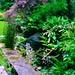 privatgarten-gross