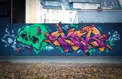 Sker & Panik (PanikOne) Tags: fire graffiti friendly ff panik friendlyfire sker panikkoblenz panikone sker132