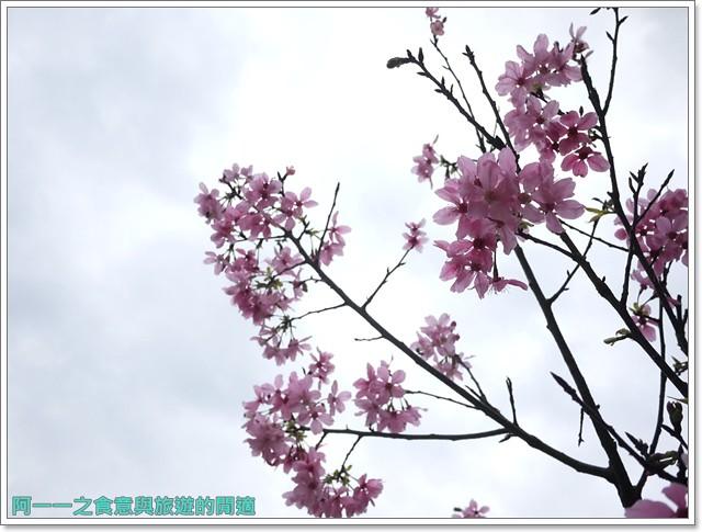 大溪老街武德殿蔣公行館中正公園image025