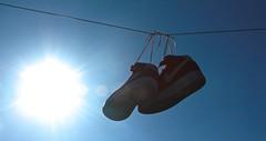 (laufar1) Tags: sneakers trainers nike kicks mid nikeair airforce1 airdry
