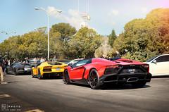 quickstrike (K-YN) Tags: auto cars italian nikon malibu platinum motorsport exotics supercars 2014