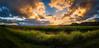 Cane - last light (dazza17 - DJ) Tags: sunset cane sugar nsw fields hdr sugarcane