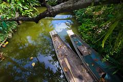 Bangkok (FiPremo) Tags: verde canon asia barca bangkok acqua thailandia viaggio 50d eos50d