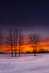 IMG_2863 (Photographer Artist) Tags: winter snow beautiful field weather sunrise landscape photography midwest colorful farm country indiana farmland heston michaelhuddleston hestonphotography