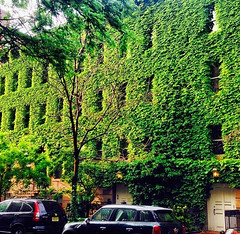 Vine City Apartments @ West 47th St NYC (ALEXMTZPHOTOS) Tags: new york city highlights