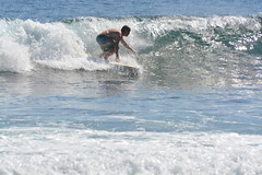 DSC_0068 (aliciadesign) Tags: surf whales bigisland honolii