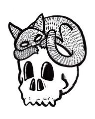 gato calavera (Marcos) Tags: chat noir skull dessin soir souvenirs hail eyes coure temps 2015 satanique dark cabaret grunge 90 1999 marcos gato negro tinta quelque choose bracho marcosbracho