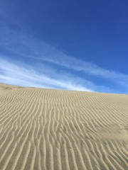 Wind Kissed (ChillWill4one5) Tags: sanfrancisco sky nature lines sand waves wind patterns oceanbeach