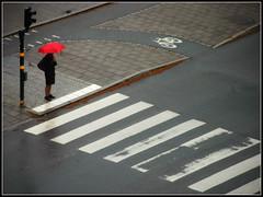 Red umbrella (*Kicki*) Tags: d100 red umbrella person street stockholm sweden people drizzle birgerjarlsgatan östermalm zebracrossing crossing pavement sidewalk road lines woman frame border pedestrian