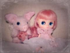 BaD May 21 - Piggies