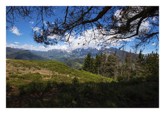 liebana (diegogonzlezvilda) Tags: sol sombra paisaje rbol monte montaas picosdeeuropa