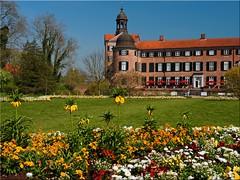 Landesgartenschau  in  Eutin (Ostseetroll) Tags: flower castle geotagged deutschland blumen schloss deu schleswigholstein eutin stategardenshow landesgartenschau2016 geo:lat=5413644152 geo:lon=1062032539