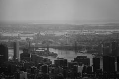 NY-19.jpg