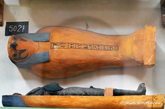 Falcon Coffin (konde) Tags: wood earth fake falcon mummy coffin osiris hieroglyphs pseudo ancientegypt cairomuseum