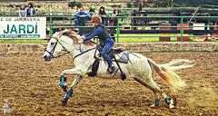 Western Besal-Maig-2016-Mat-042p (vadobuch) Tags: country girona western catalunya garrotxa hpica besal