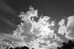 Clouds (Pascal Volk) Tags: blackandwhite bw white black berlin clouds wolken wideangle wa sw ww 16mm westend schwarz cloudporn superwideangle olympiastadion sww uwa weitwinkel swa weis ultrawideangle uww schwarzweis ultraweitwinkel superweitwinkel canonef1635mmf4lisusm artinbw canoneos6d berlincharlottenburgwilmersdorf
