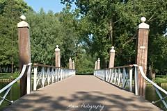 Kralingse Plas (Mone-Photography) Tags: bridge rotterdam meer plas kralingen kralingseplas