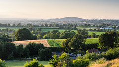 Blackmore Vale (Joe Dunckley) Tags: uk summer england field landscape evening hill meadow sunny farmland pasture dorset agriculture blackmorevale duncliffe childokeford hambledonhill northdorset stourvalley