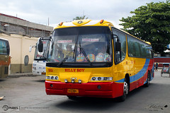 Billy Boy Transport - 2115 (blackrose917_051) Tags: boy bus transport royal daewoo billy society economy philippine enthusiasts 2115 philbes bh115e de12t