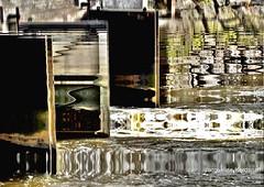 Photo gagnante .... (jackline22) Tags: reflet marais reflets cluse