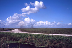 (patrickjoust) Tags: palmbeachcounty florida sugarcane fields burn clouds fujicagw690 fujichromeprovia400x 6x9 medium format 120 rangefinder 90mm f35 fujinon lens manual focus analog mechanical patrick joust patrickjoust south fl usa us united states north america estados unidos autaut farm field sugar cane canal farming rural sticks dirt road smoke power lines wires towers