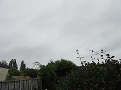 Wednesday, Where did that sunshine go IMG_8175 (tomylees) Tags: morning weather wednesday grey spring may overcast 25th essex 2016