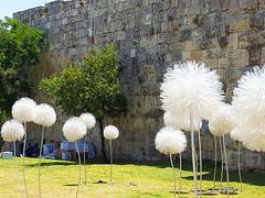 jerusalem-20160525_115506 (WebsThatSell) Tags: israel jerusalem