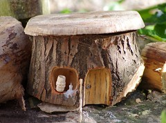 borrowers / fairy house log carving (Simon Dell Photography) Tags: wood log carving diy how hand made simon dell carver artist first try