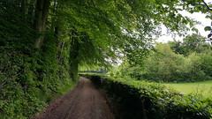 A Sunday stroll (hillviewembroidery) Tags: spring springtime sundaywalks greenfields ukspring