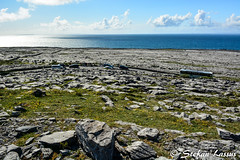 DSC_4284 (Salmix_ie) Tags: world county flowers ireland west heritage beach nature beautiful way coast site interesting nikon rocks clare scenic may atlantic unesco burren lovely nikkor tranquil the 2016 d7100