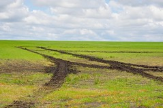 Muddied field! (Jeannette Greaves) Tags: wet field mud cardinal spray manitoba conditions 2016