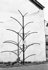Bare (Man with Red Eyes) Tags: tree monochrome metal analog blackwhite bare rangefinder lancashire lancaster m6 leicam6 adox silverhalide v850 td201 silvermax anchelltroop 40mmf14voigtlandersc a3minsb3mins continuousagitation