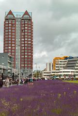 Rotterdam (Pieter Mooij) Tags: rotterdam blaak m82 rotterdamblaak summicronm35mmasph leicam82